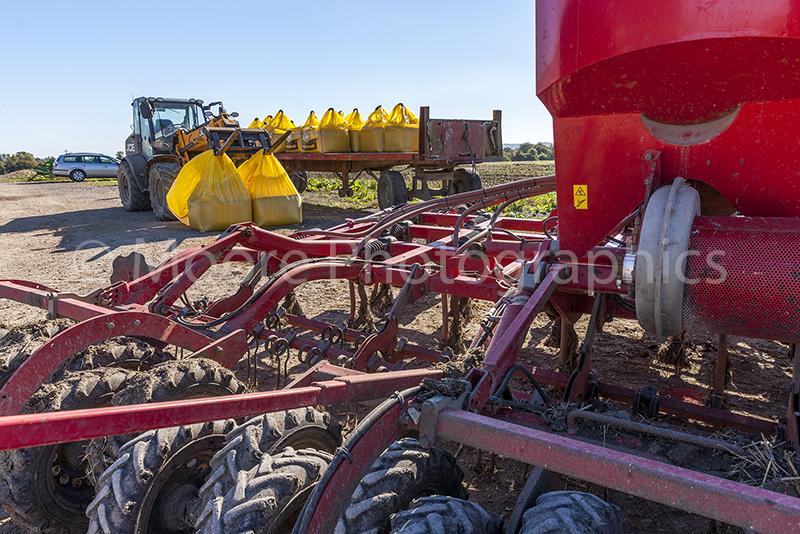 Loading SKYFALL wheat seed into Simba Horsch Sprint