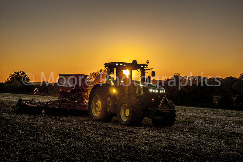 Sunset drilling of SKYFALL wheat using a John Deer 7250 tractor and Simba Horsch Sprint version 2