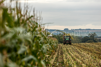 Cutting maize in the vale of Pewsey dynamic edge shot and overspill